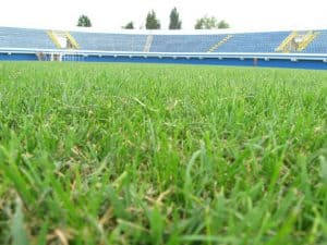 stadion7